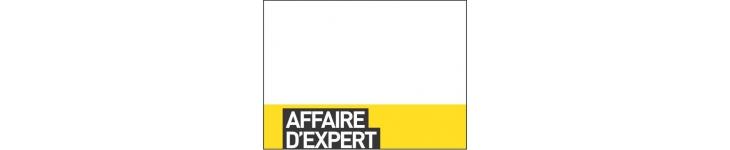 Affaires d'expert